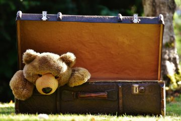 luggage-1650171_1280